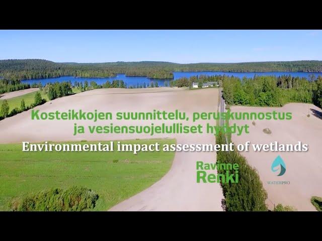Environmental Impact Assessment of Wetlands – Kosteikkojen vesiensuojelulliset hyödyt