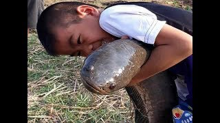 Wow Amazing Kids Fishing - Cambodia Traditional fishing - How to Catches Fish