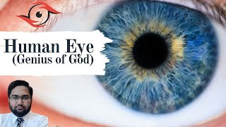 Insan ki Aankh Allah ka shahkar / Human eye (Genius of God)