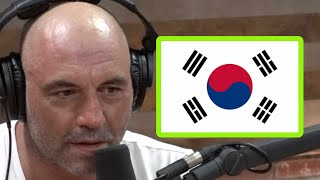Joe Rogan's Taekwondo Story: Sometimes They Die