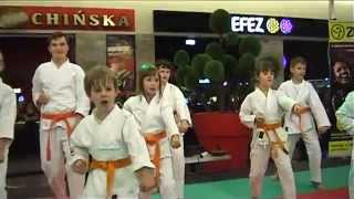 The show  Traditional Karate Club at