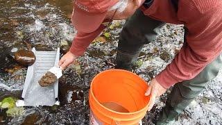 S2E14 Washington State Gold Mining - Small Creek Prospecting wth Pete