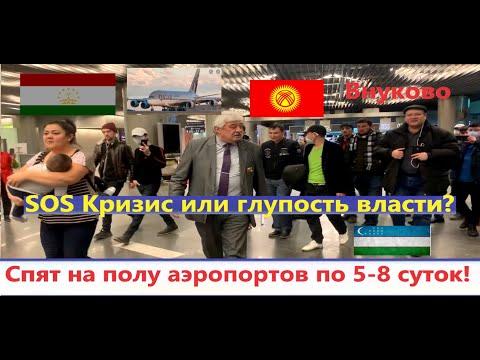 Таджикистанцы не могут уехать из России и спят на полу аэропортов по 5-8 суток! Авиакомпании не выпо