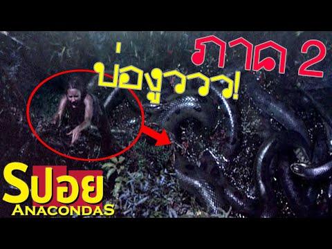 [อัพใหม่] อย่าไปยุ่งกะงูตอนมันจุกกะดุ่ยกัน! (สปอยหนัง-เก่า)AnacondaS:the Hunt For The Blood Orchid