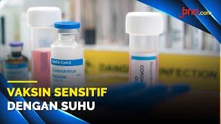 Dr. Reisa: Survei Mayoritas Masyarakat Indonesia Bersedia di Vaksin Covid-19 - JPNN.com