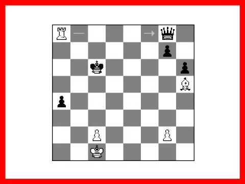 מגזין אופניים - פורום מגזין אופניים - נושאים: chess endgame puzzles