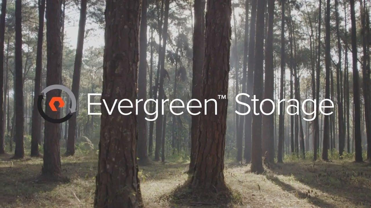 Evergreen Storage: Free Every Three