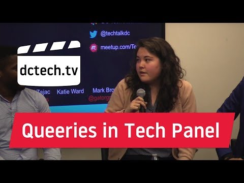 Queeries in Tech: Panel Discussion presented at Tech Talk DC
