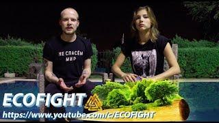 Уроки экологии. ECOFIGHT (12+)