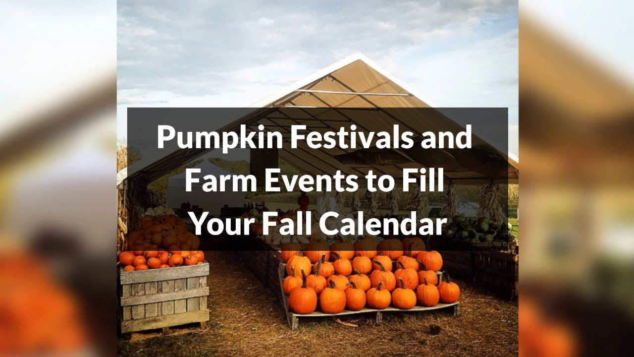 Important Baltimore Fall Events in Baltimore Everyone Should Not Miss