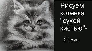 Как нарисовать котенка. МК по рисованию сухой кистью. Уроки #урокирисования_start от Т.Артыковой