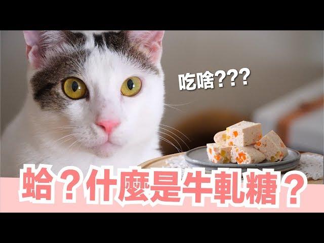 貓的牛軋糖?【貓副食食譜】好味貓鮮食廚房EP147