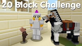 Minecraft PS4 - 20 Block Challenge - I Placed Blocks! (11)