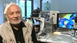Einstellungssache : Fotografie mit Mikroskop | Euromaxx