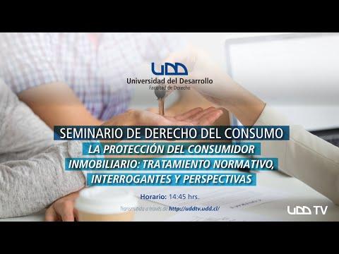 Seminario de Derecho del Consumo: La protección del consumidor inmobiliario