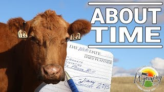 a-cow-s-calendar-and-nutritional-changes-it-brings