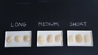 Which Rice for Which Dish- Kitchen Conundrums with Thomas Joseph