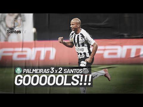 PALMEIRAS 3 X 2 SANTOS | GOLS | BRASILEIRÃO (10/07/21)