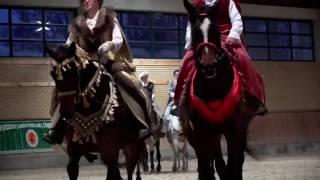 Polonez na koniach w janowskiej stadninie - www.pulsmiasta.tv,