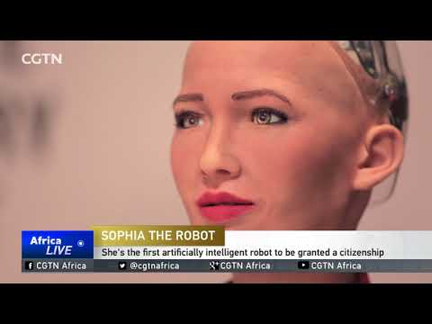 Sophia the robot attends creative summit in Egypt
