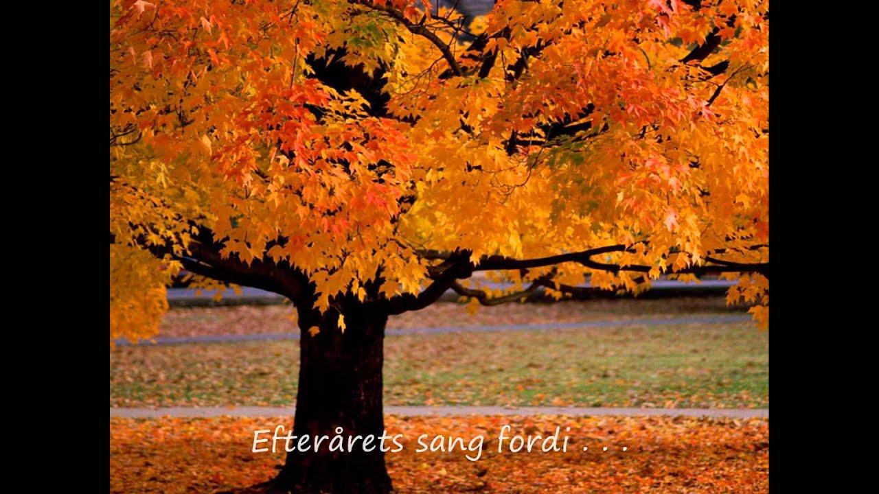 sange om efterår