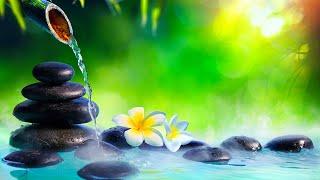 Relaxing Music 24/7, Spa Music, Calm Music, Peaceful Music, Sleep Music, Meditation, Zen, Study, Spa