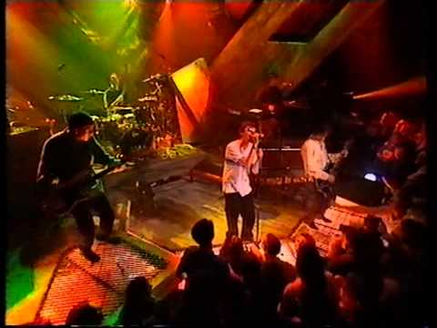 The Charlatans, How High, live on TFI Friday mp3