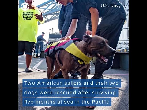 Women lost months at sea credit dogs for keeping spirits up