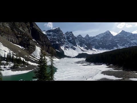 Danger in the woods! Banff Alberta Canada 2017