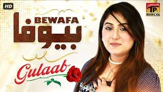 Gulaab | Haye Bewafa Mera Dil Mor Day (Official Video) | Tp Gold