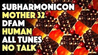 Markov Chain [DFAM / Subharmonicon / Mother 32 / HUMAN / All Tunes / No Talk]