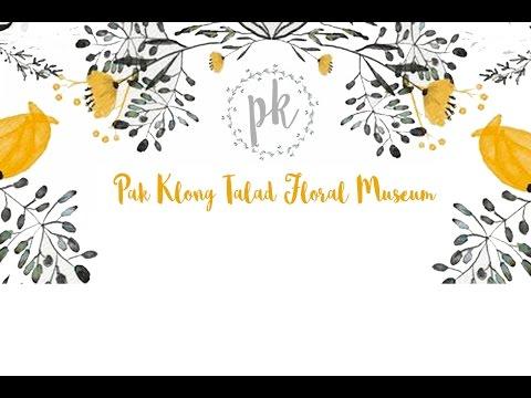 MUSEUM DESIGN: PAK-KLONG TALAD FLORAL MUSEUM