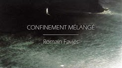 Romain Faviès - Confinement mélangé