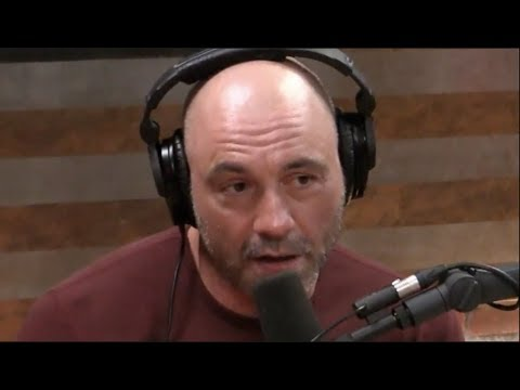 Joe Rogan on the Physical Toll of Fighting