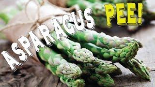 Asparagus & Urine: Asparagus & Funny Pee Smell Explained