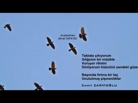 Cahit zarifoğlu - Ve Tek Kare Bir Film