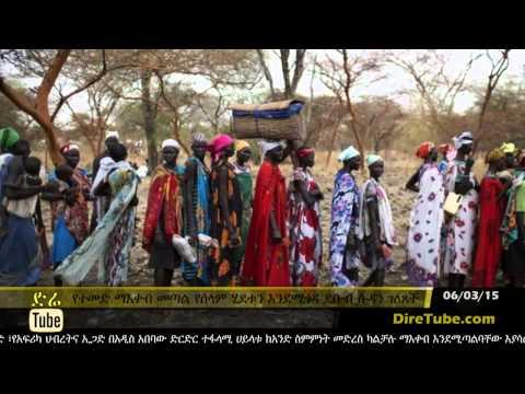 DireTube News - South Sudan says UN sanctions will harm peace process
