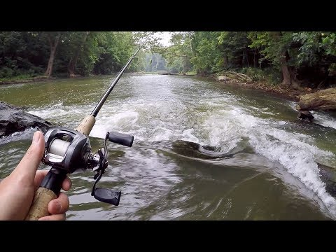 Video Creek fishing for catfish