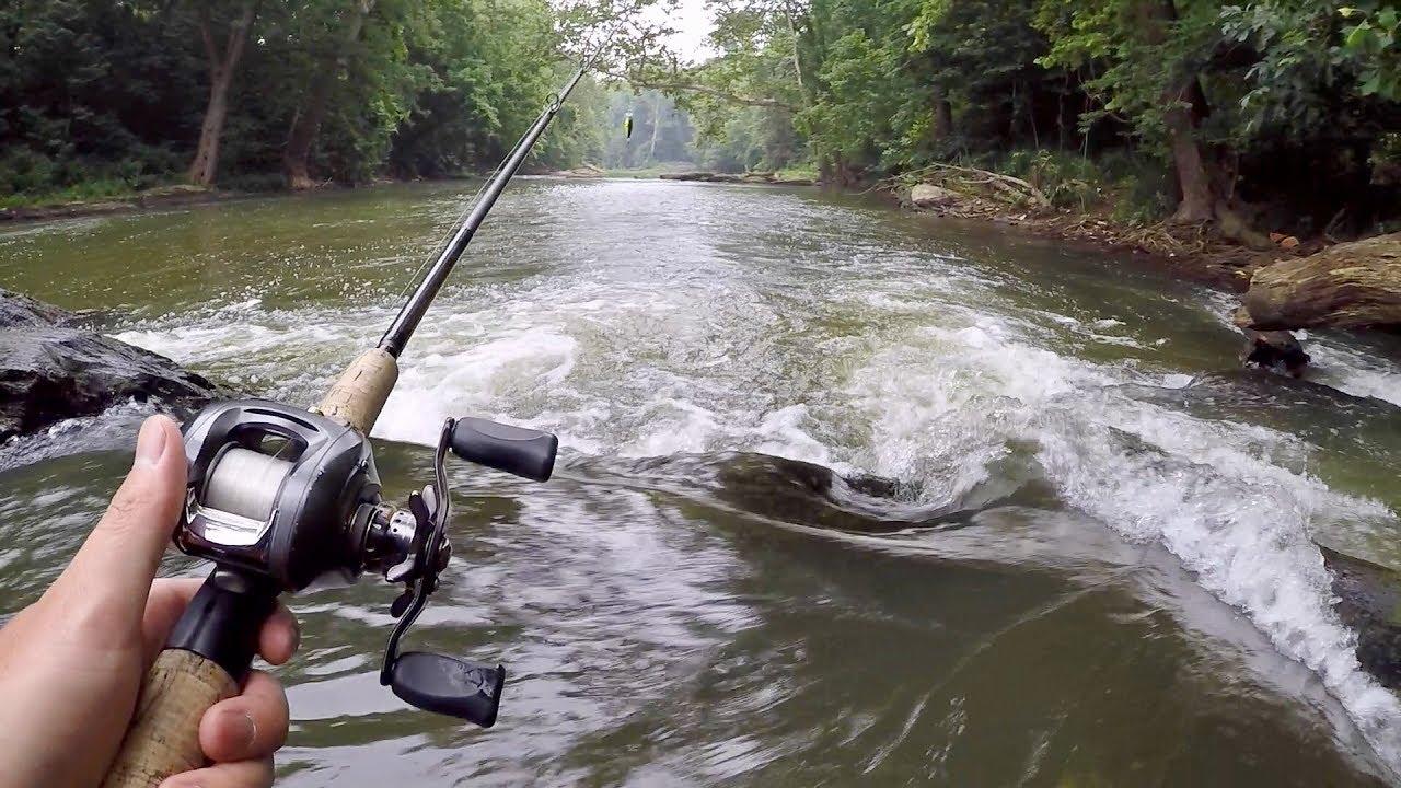 Amazing Creek Fishing For Smallmouth Bass Youtube