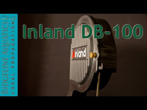Product Review - Inland DB-100
