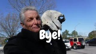 Bye Bye Baby!