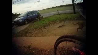 Bike Ride MCT 11/5/16
