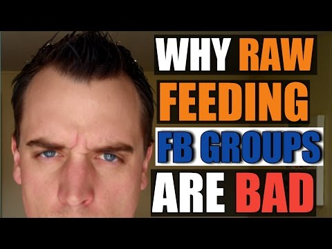 Raw Feeding Facebook Groups - 4 Reasons Why They're Bad