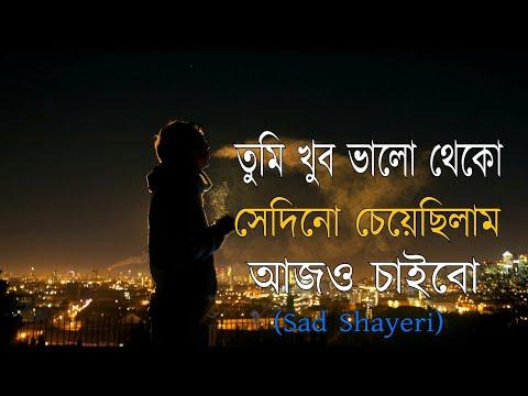 Tumi Khub Valo Theko (sad Shayeri) | bengali new broken  heart voice shayeri