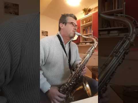 tenor sax El condor passa s podlago Vojko