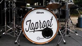 Watch Taproot Stolage video
