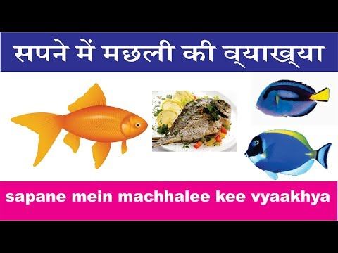सपने में मछली की व्याख्या. Sapane Mein Machlee Kee Vyaakhya. Interpretation Of Fish In Dream