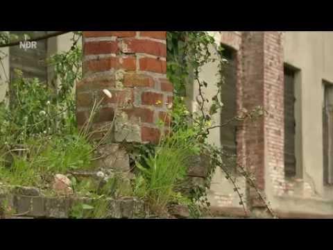 Herrenhaus in Broock - Neues Leben im alten Gemäuern NDR Kurzfiilm