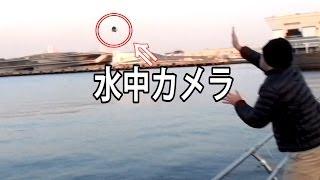 冬の横浜港に水中カメラ【GoPro】ブン投げてみた
