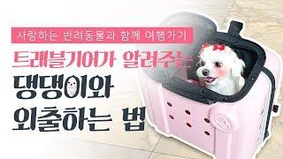 강아지 여행 준비물! 애견 펜션여행 간지 애견백팩 캐리어 하나로 인싸되는방법
